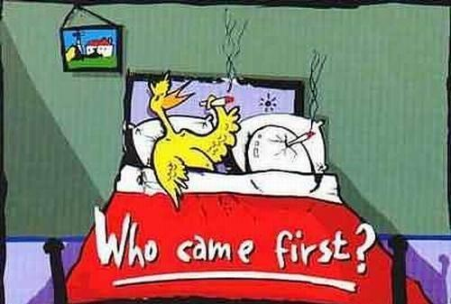 Funny Chicken Cartoons: The Chicken Or The Egg??